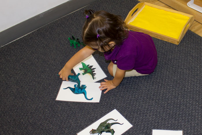 little girl learning language with dinosaur toys and images